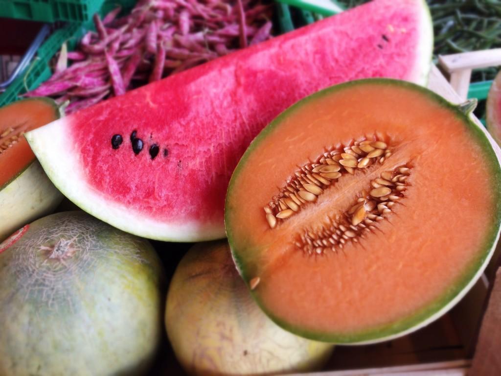 melone e cocomero